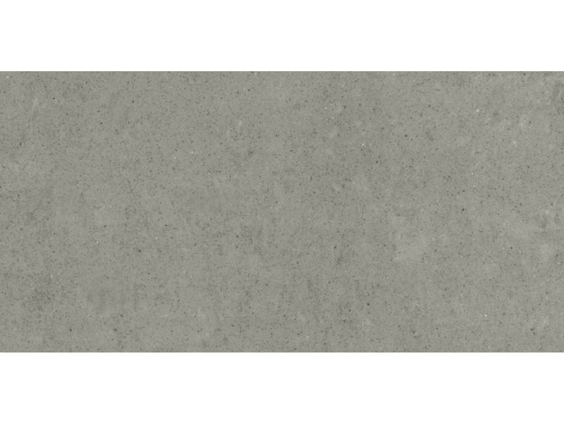 RAK Ceramics Feinsteinzeugfliese Gems grey polished - 30x60 cm