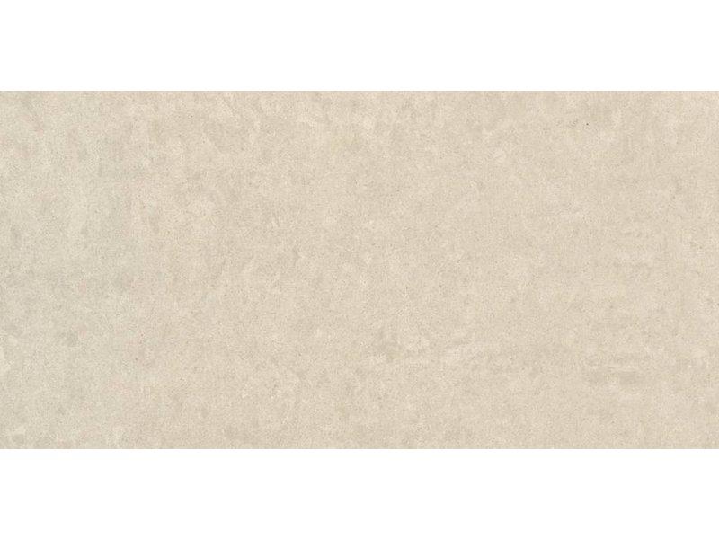 RAK Ceramics Feinsteinzeugfliese Gems light grey polished - 30x60 cm