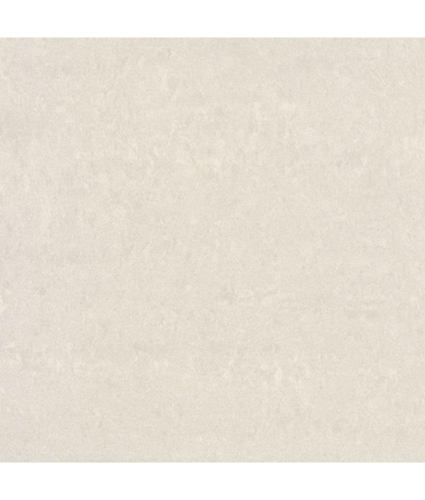 Feinsteinzeugfliese Gems cold light grey matt - 60x60 cm