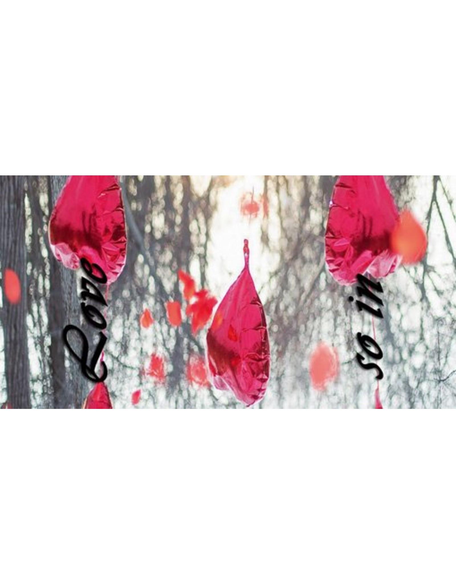 "the shoe-tattoo the shoe-tattoo ""hearts red nature"""