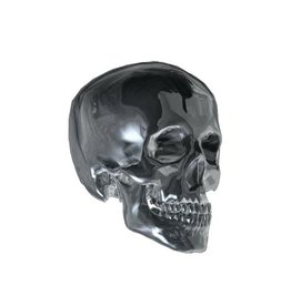 the shoe-sticker scull silver