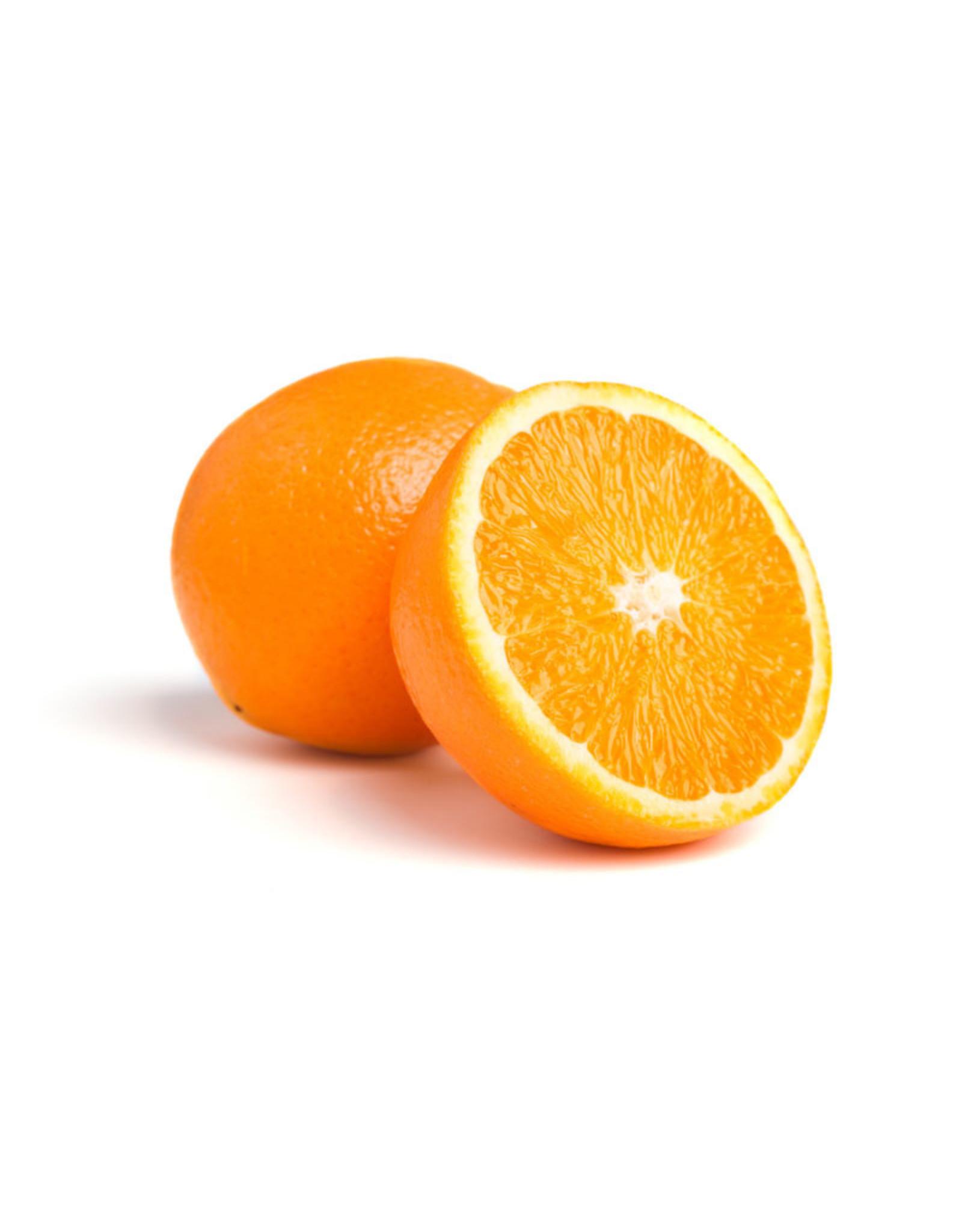 Sinaasappels - hand - per kilo