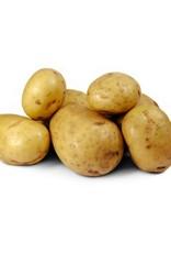 Agria aardappelen eigen teelt per kilo
