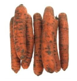 Winterpeen ongewassen per kilo