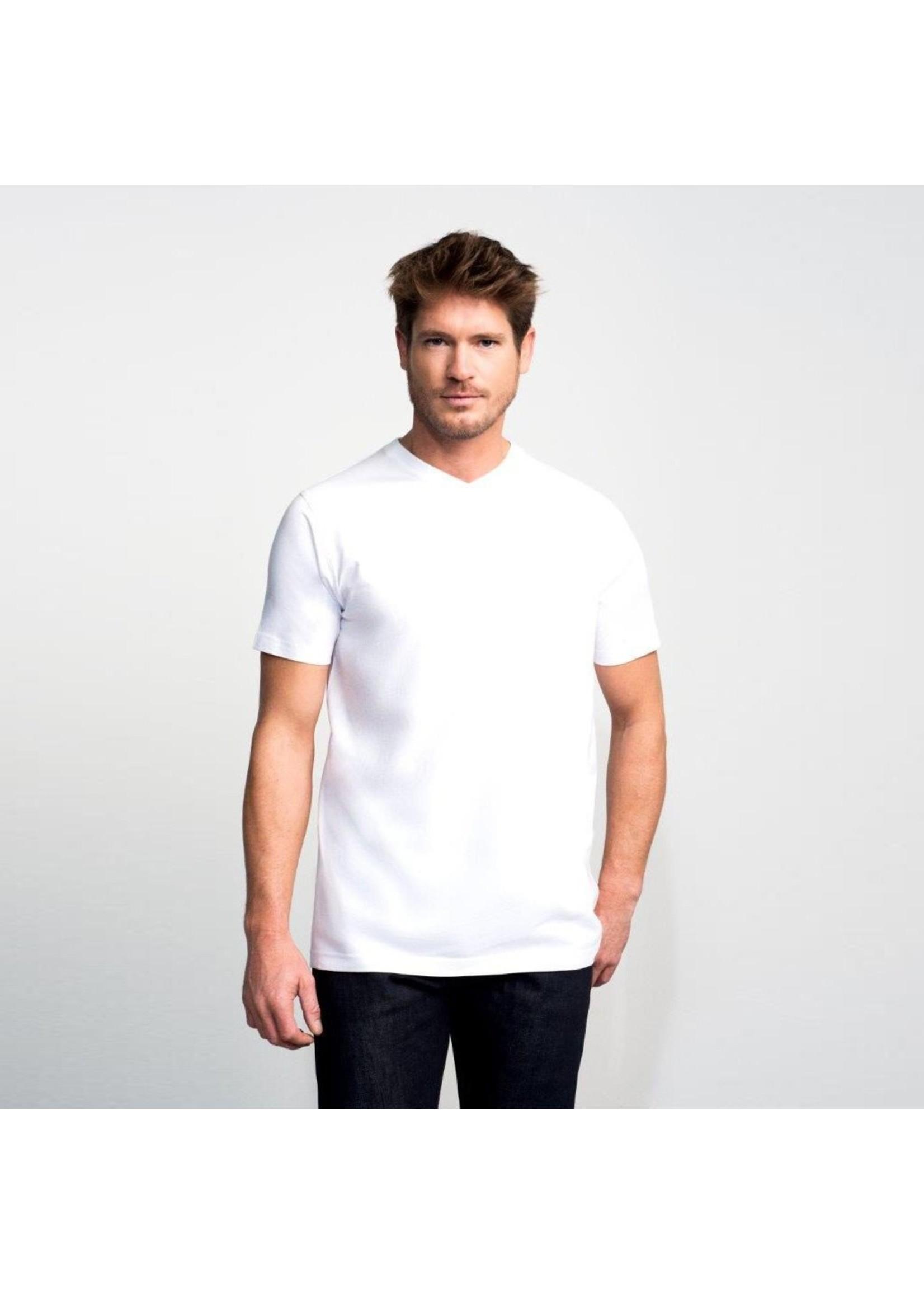 Slater Basic 2-pack v-hals t-shirt wit