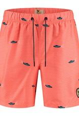 Shiwi zwemshort oranje speedboten