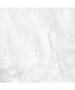 Veren Marabou Wit 8,5-12,5cm 15st