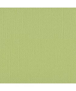Florence Cardstock Anise Texture A4 216g