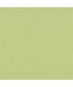 Florence Cardstock Anise Texture 12x12'' 216g