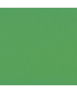 Florence Cardstock Holly Texture 12x12'' 216g