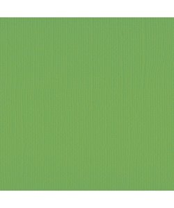 Florence Cardstock Frog Texture 12x12'' 216g