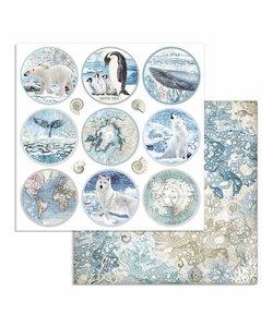 Stamperia Paper 12x12'' Arctic Antarctic Rounds