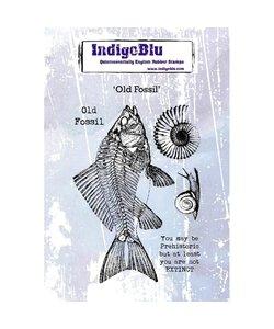 Indigo Blu rbr stamp A6 Old Fossil