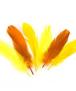 Veren Mix Geel/Oranje 12,5-17,5cm 15st