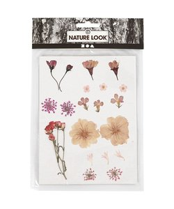 Nature Look Gedroogde Bloemen & Bladeren Licht Roze/Ecru