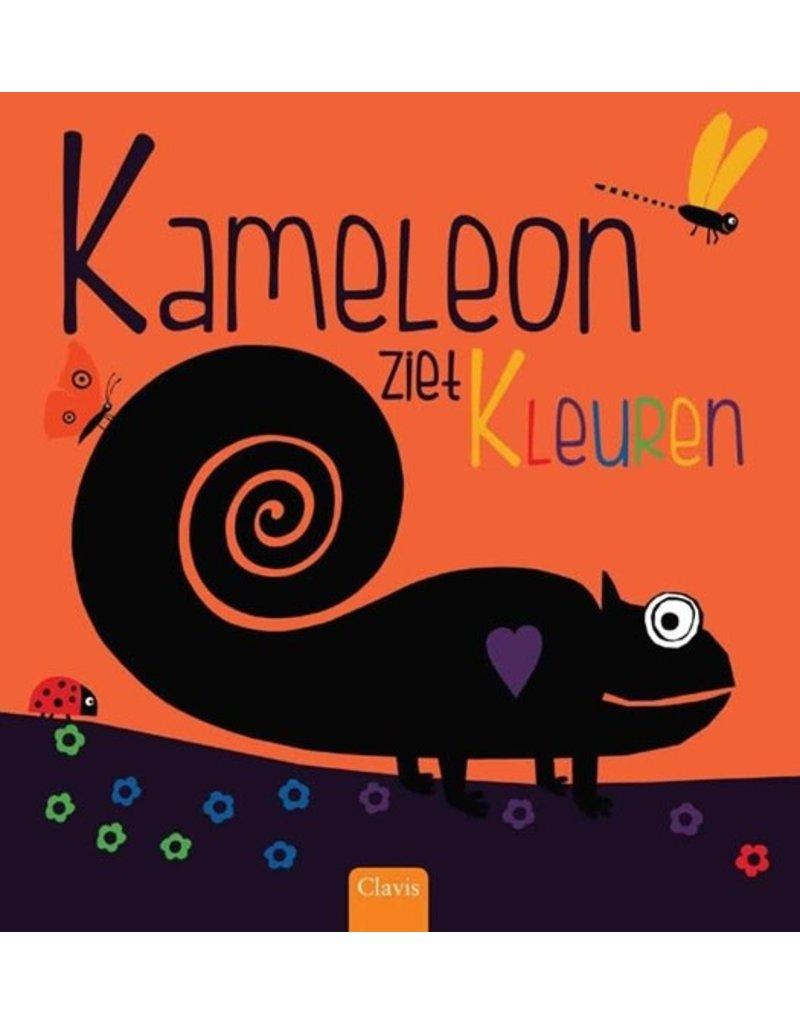 Boeken Clavis Boek - Kameleon ziet kleuren