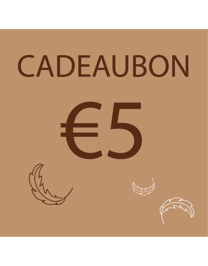 Donsaapje Cadeaubon €5