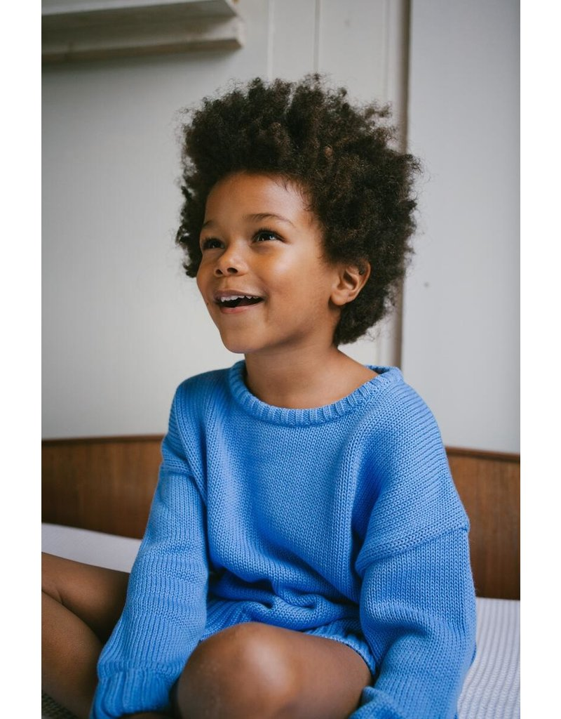 Daily Brat Daily Brat - Austin knitted sweater Serenity Blue