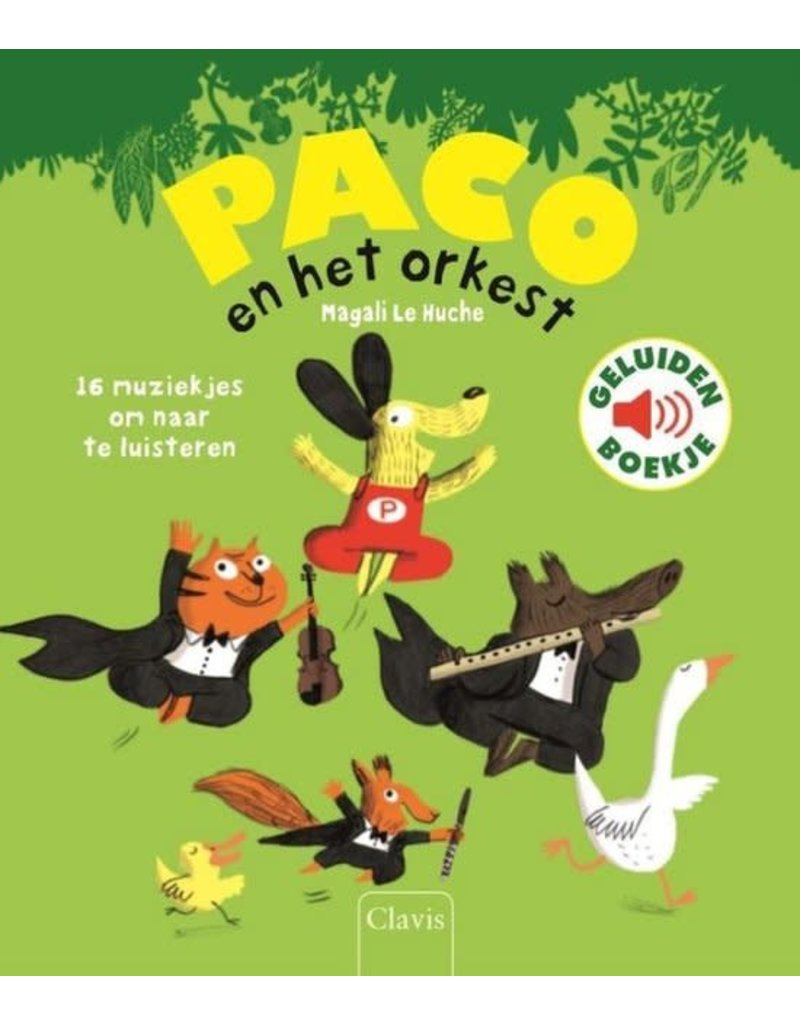 Boeken Boek : Paco en het orkest ( geluidenboek)