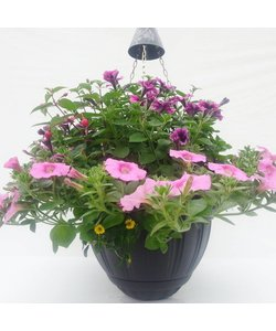 Hanging Basket XXL