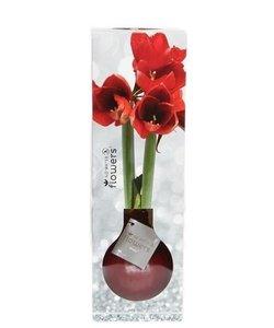 Aucune fleur d'eau Waxz® Luxery Box
