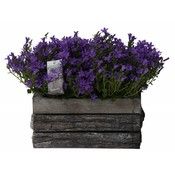 Campanula addenda tweeling in houten schors pot