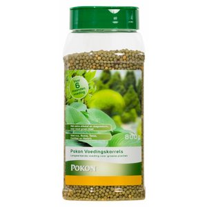 Plantenvoeding Pokon long-acting granules for green terrace plants