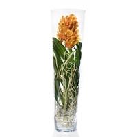 Vanda Lisanne en verre épais 90 cm