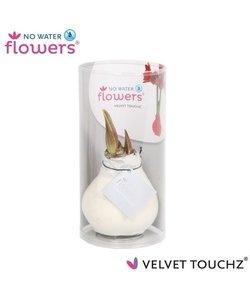 No Water Flowers Velvet Touchz® - in koker