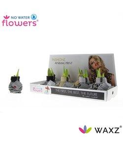 No Water Flowers® - Imprimé animalier Fashionz