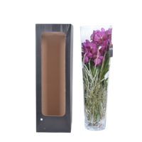 Vanda Lisanne in Glas 70 cm rosa