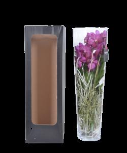Lisanne in glas 70 cm roze