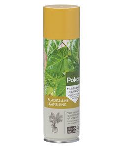 Pokon leaf shine 250ml