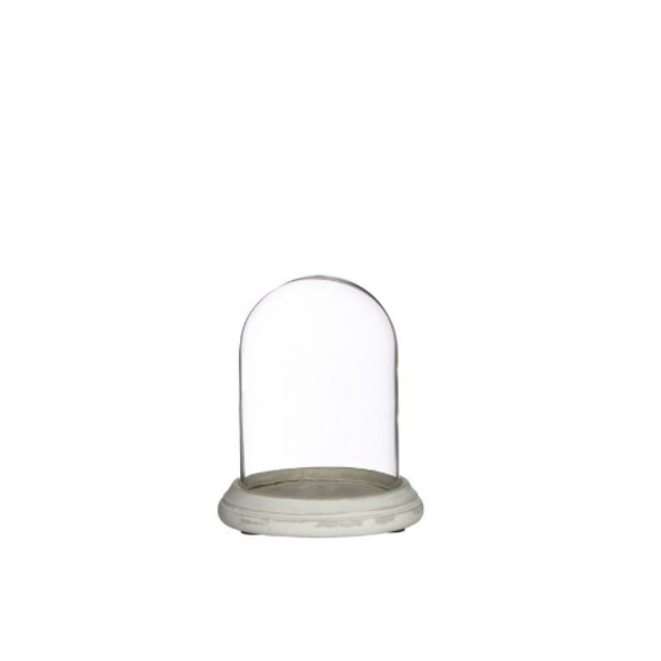 Alflora Bell jar with glass cover
