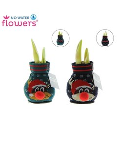Mélange Fashionz Rudolph No Water Flowers®