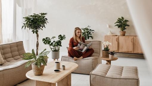 Populairste woonkamer planten van nu!
