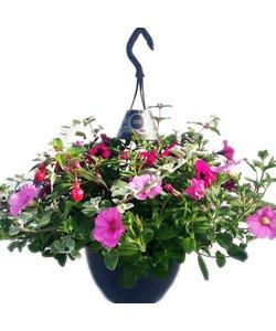 Hanging Basket easy in hangpot