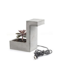 Concrete desk lamp with planter