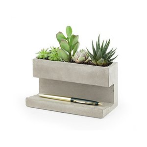 Kikkerland Pen holder with concrete planter L