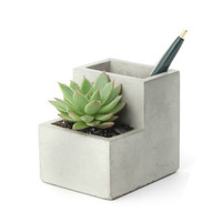 Kikkerland Pen holder with concrete planter S