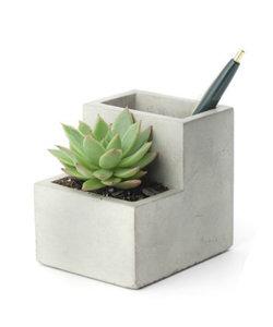Porte-stylo avec jardinière en béton S