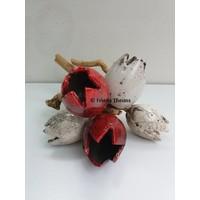 Tulpjes op hout