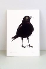 """Maartje van den Noort """"Blackbird"""" artprint A4"""