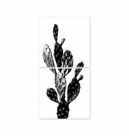 Boubouki Cactus 02 Poster