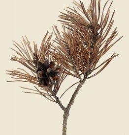 "Liljebergs ""Scots Pine"" 30x40cm"