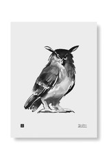 Teemu Jarvi Poster 'Owl' 30x40 cm