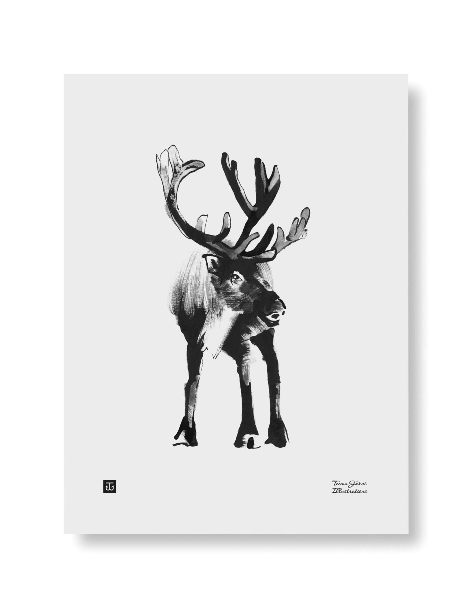 Teemu Jarvi Poster 'Reindeer' 30x40 cm