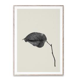 Paper Collective Art Card Sabi Leaf 03