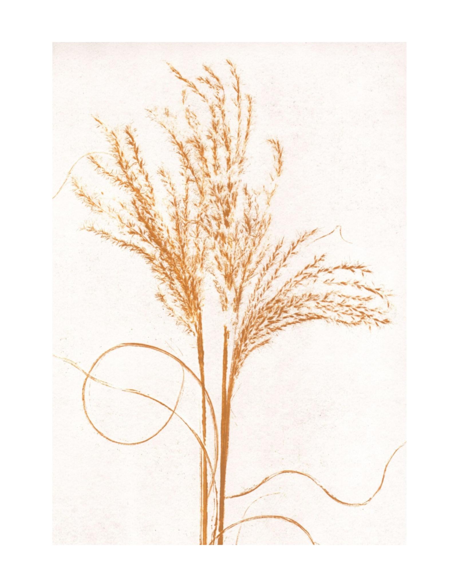 Pernille Folcarelli Artcard A5 Silvergrass Mustard