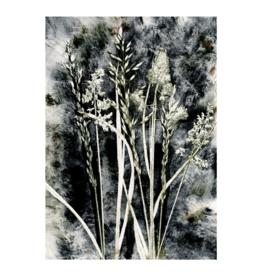 Pernille Folcarelli Artcard A5 Grass Charcoal